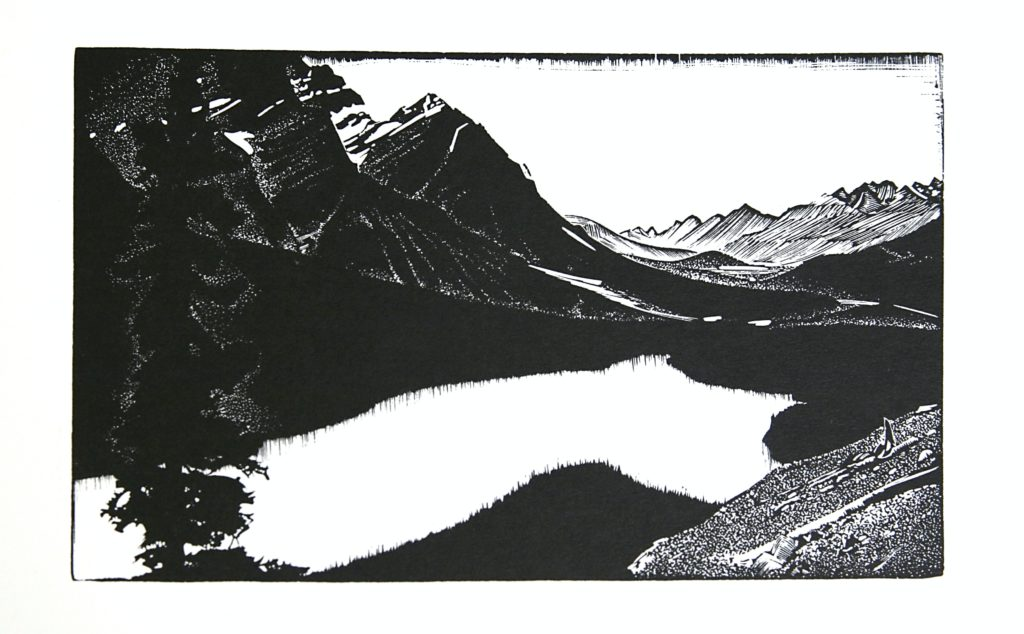 Mistaya Valley by WJ Phillips